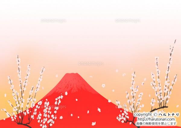 赤富士と白梅