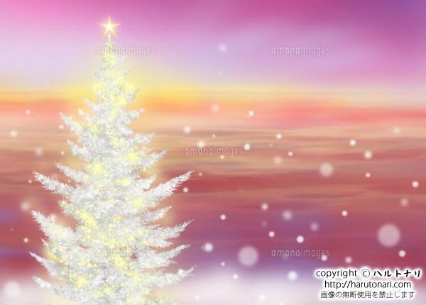 クリスマスに輝く