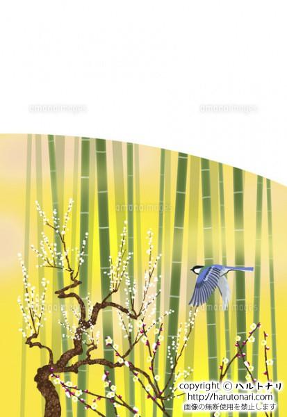竹林と白梅と四十雀