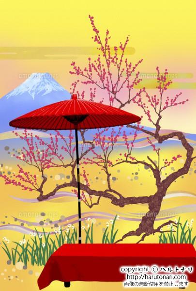 紅梅と富士と野点