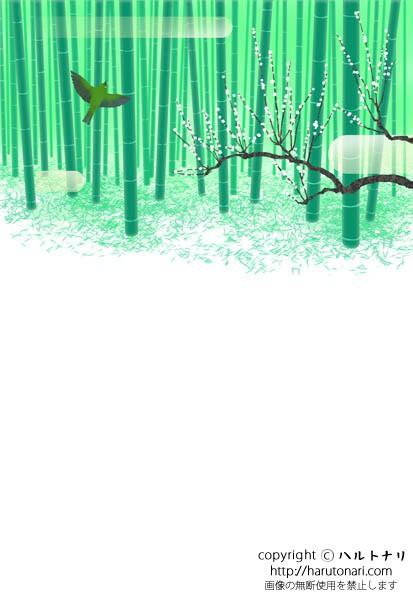 竹林に目白