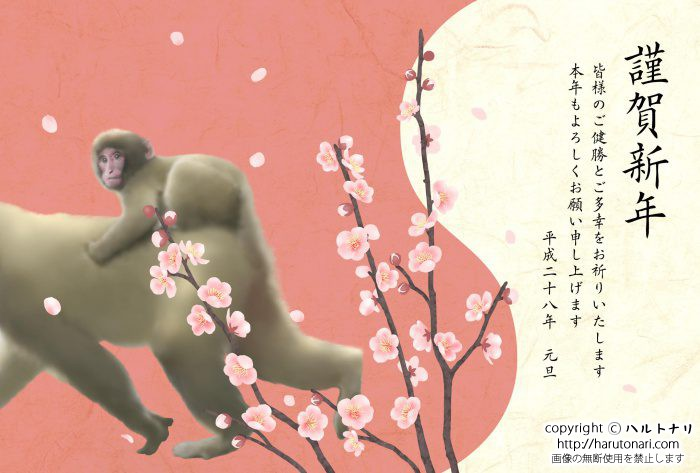 梅を見る小猿