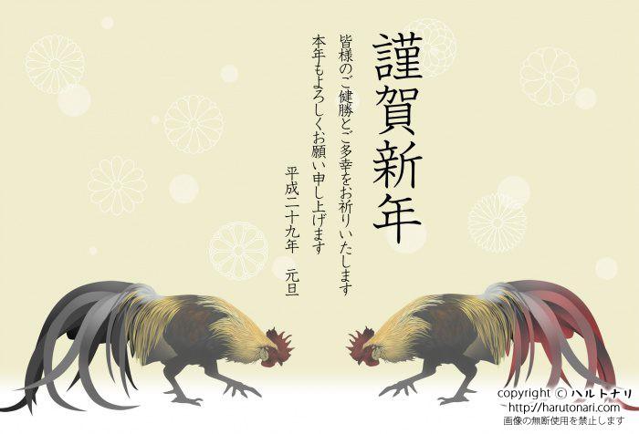 二羽の尾長鶏