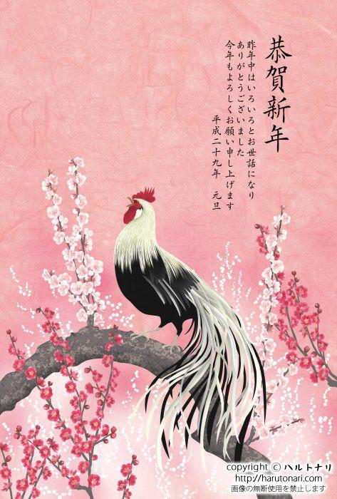 梅の木に尾長鶏