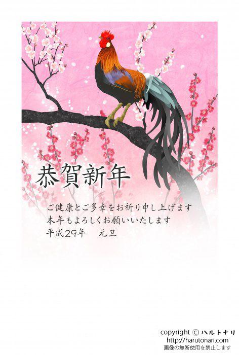 梅の枝に尾長鶏