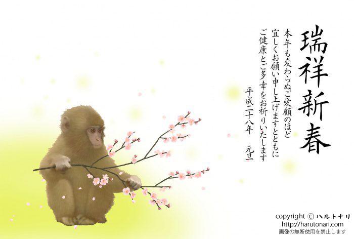 梅で遊ぶ小猿